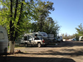 Spring at the Turquoise Triangle RV Park in Cottonwood, Arizona