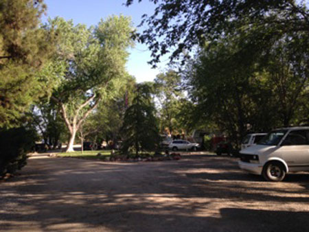 Driveway and trees in the Turquoise Triangle RV Park in Cottnowood, Arizona